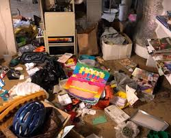 Green Guys Junk Removal provides hoasrder clean outs in sarasota fl